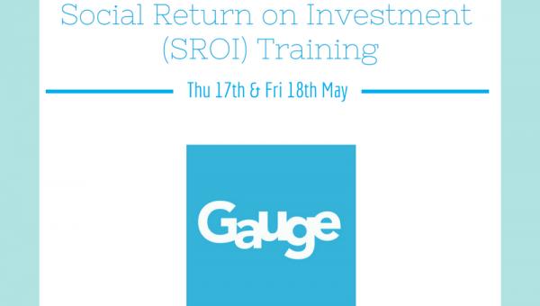 Social Return on Investment Training